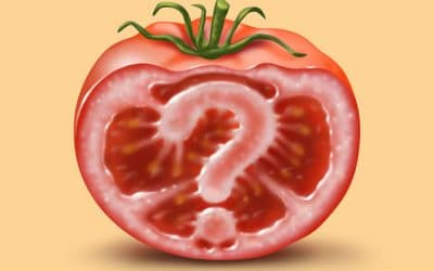 What is GM food and why do we need to know about it?