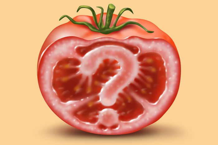 What is GM food and why do we need to know about it?‏